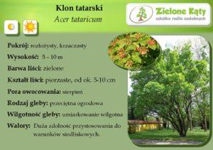 tatarski