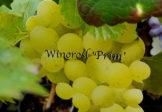 Smaczne winogrona z własnego ogrodu.